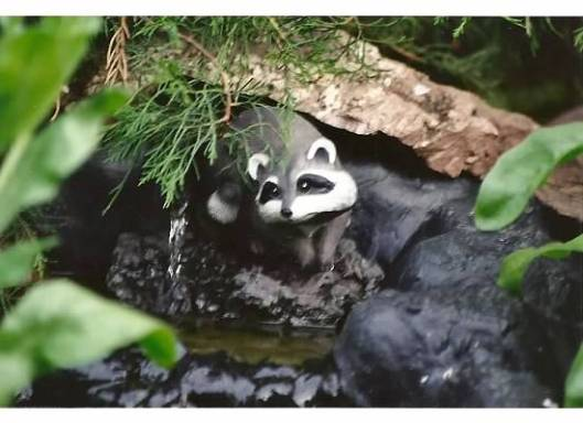 Bandit in Waterfall