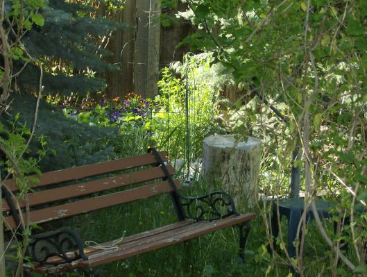 A place to sit and contemplate and enjoy the wildlife. We have park benches all through the back yard for this purpose.