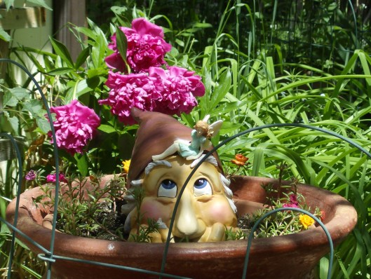 Gnome Hiding In Pot