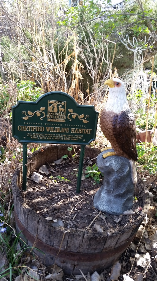 Newest Wildlife Habitat Sign With Watchful Guardian